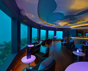 Drinking With The Fishes: Underwater Bar